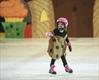 2014 Flamboro Skating Club ice show