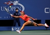 2-time Grand Slam winner Li Na retires from tour-Image1