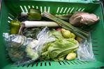 Halton Fresh Food Box