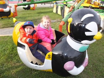Bobcaygeon Fair penguins