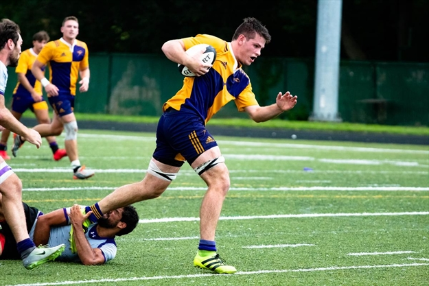 Warriors, Golden Hawks on rugby collision course ...
