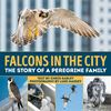 Falcons In the City: The Story of a Peregrine Family