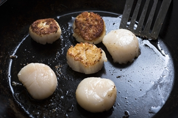 COOKING SCALLOPS