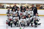 Brock Novice Wild OMHA finalists