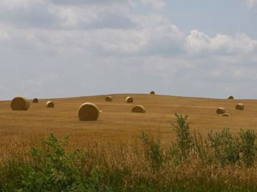 'Extraordinary' demand for Barrie-area farmland