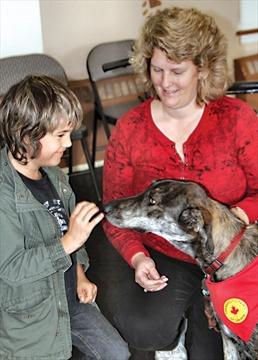 D Arcy S Dog Training Pet Services Cambridge On