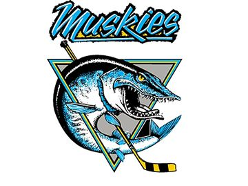Lindsay Muskies playing 500 hockey after weekend