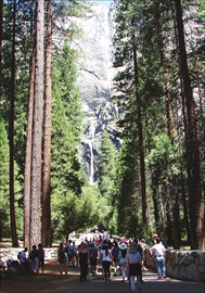 Celebrating Yosemite's 150th anniversary– Image 1
