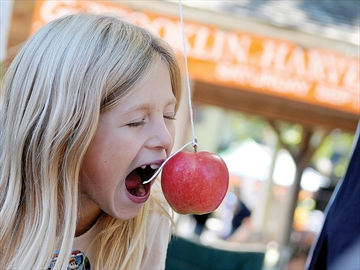 Brooklin Harvest Festival moving to Baldwin Street