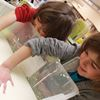 Full steam ahead for March break at libraries