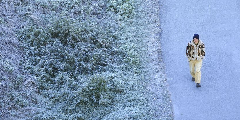 Frost expected to hit Brampton and Mississauga for Thanksgiving
