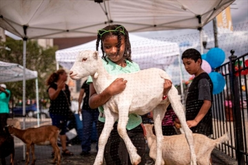 In this Friday, Aug. 16, 2019, photo, a girl carries a goat at the Inner-city Muslim Action Network's (IMAN) farmers market in Chicago in Chicago in Chicago. Atlanta, Chicago and other large cities across the country are taking a multi-pronged approach to bringing healthy diets to