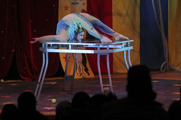 The Family Fun Circus was at the Charles W. Stockey Centre on Friday. The one ring European-style circus featured a clown, acrobats, aerialists and more.