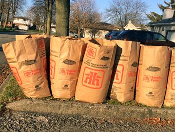 Bags full of leaves sit at the curb on Brady Street in north Niagara Falls on  Friday, left behind after the regular scheduled curbside of garbage and recyclables a day earlier. The region and its contractor both apologizes for delays in picking up yard waste.