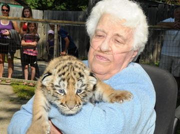 Barrie woman fullfils lifelong dream to meet tiger