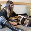 Dogs with cancer could lead researchers to treatments for humans