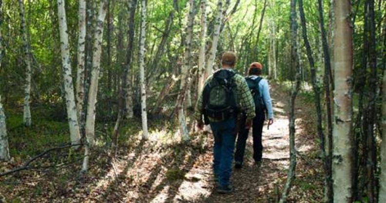 nature walk walking through woods toronto silently move tips super survivalkit