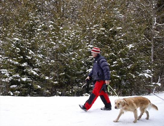 Snowfall warning issued for Peterborough and the Kawarthas