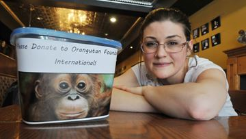 Orangutan Foundation International Volunteer