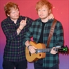 Ed Sheeran impressed with wax model's bulge-Image1