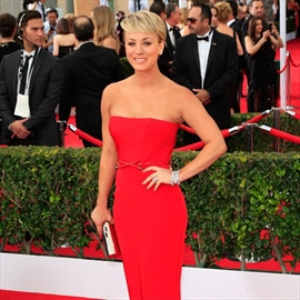 Kaley Cuoco and Ryan Sweeting's 'daily' fights-Image1