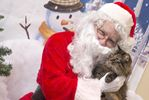 Santa Paws stops in to the Burlington Humane Society