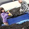 Scugog compost giveaway