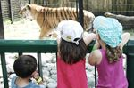 Bowmanville zoo to close in 2016