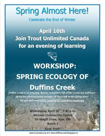Spring Ecology of Duffins Creek