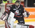 IceDogs' goalie Dhillon on the rise