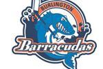 Barracudas clinch playoff spot on last day of PWHL season