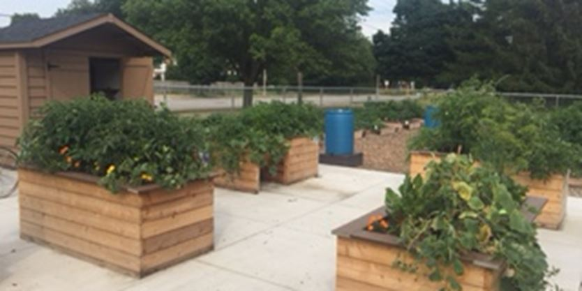 Burlington 39 S New Community Garden Receives 20k Grant