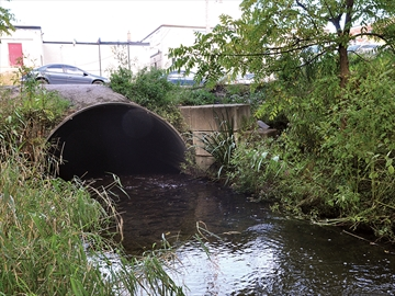 Uxbridge Brook culvert