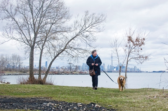 Humber Bay Dog Park