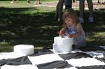 Oakville Summer Cultural Connections — Pop-Up Picnic