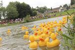 Rubber duck race in New Hamburg