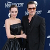 Brad Pitt buying vintage plane for Angelina Jolie-Image1