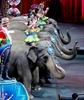 Last dance: Final performance for Ringling Bros. elephants-Image14