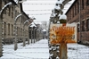 Survivors visit Auschwitz a day ahead of 70th anniversary-Image1