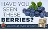 Berry burglary