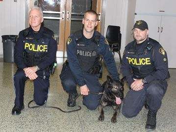 Bandit visits Dunnville Secondary School