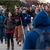Just the Facts: Polls suggest students expect big debts