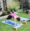 Your Life yoga sun salutation with Wendy Melville
