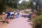 Pokemon players pick up garbage around Peterborough's parks and trails.