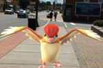 Town to host a Pokémon Go event this Saturday.