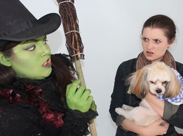Wasaga theatre group presents Wizard of Oz