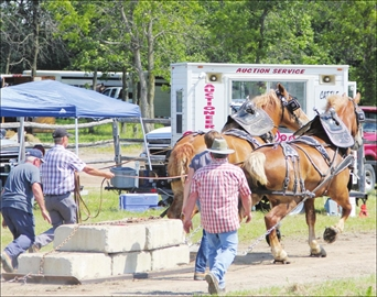 Spencerville Stampede returns this weekend– Image 1
