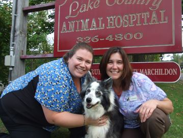 Orillia-area vet hosts 'Farley' fundraiser