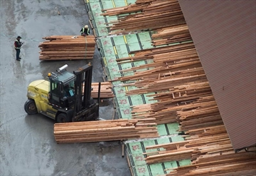 Workers sort and move lumber at the Delta Cedar Sawmill in Delta, B.C., on Friday January 6, 2017. Canada is turning to NAFTA in its bid to stop U.S. duties on Canadian softwood lumber.THE CANADIAN PRESS/Darryl Dyck
