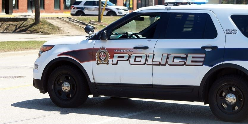 Man walking dog assaulted by two women, Guelph police say